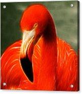 Fractalius Flamingo Acrylic Print