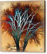 Freaky Tree 1 Acrylic Print