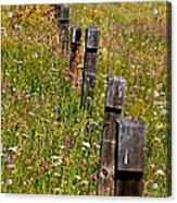 Fredricks Meadow Acrylic Print
