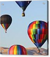 Free Flying Acrylic Print