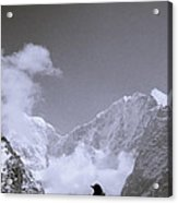Freedom In The Himalayas In Nepal Acrylic Print