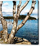 Frenchman Bay Acrylic Print
