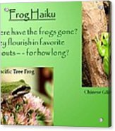 Frog Haiku Acrylic Print by Laurel Talabere
