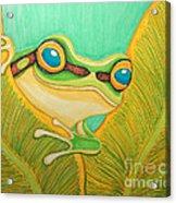Frog Peeking Out Acrylic Print