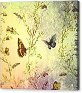 Frolicing Butterflies Acrylic Print