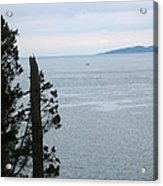 From The Bluff Acrylic Print