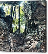 From The Cave Acrylic Print