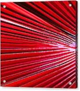 Frond Of Red Acrylic Print