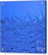 Frost On A Windowpane Acrylic Print by Thomas R Fletcher