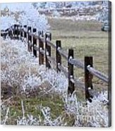 Frosted Fence Acrylic Print