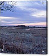 Frosty Cape May Meadow Acrylic Print