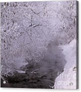 Frosty Trees And Creek Acrylic Print