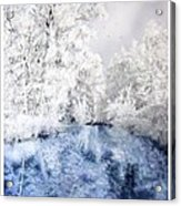 Frozen Beauty Acrylic Print