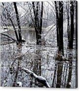 Frozen Landscape 5 Acrylic Print