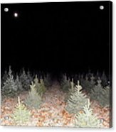 Full Moon Beyond The Tree Farm Acrylic Print