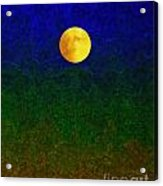 Full Moon Acrylic Print by Dale   Ford