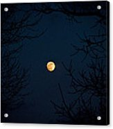 Full Moon On A Winter's Night Acrylic Print