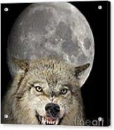 Full Moon Wolf Acrylic Print
