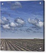 Furrows In A Texas Field Acrylic Print