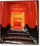 Fushimi Inari Shrine Pic.1 Acrylic Print