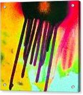 Fusion Five 1 Acrylic Print