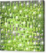 Future Forest Abstract Acrylic Print