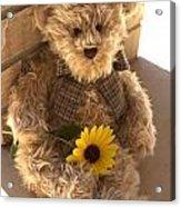 Fuzzy Teddy Acrylic Print