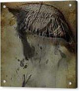 Galloping Glares  Acrylic Print