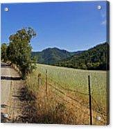 Galls Creek Road In Southern Oregon Acrylic Print