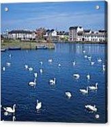 Galway, County Galway, Ireland Acrylic Print