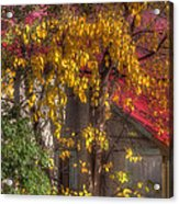 Garage And Leaves Acrylic Print