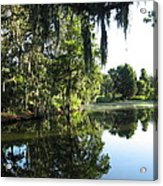 Garden At Magnolia Plantation Acrylic Print
