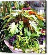Garden Bowl Of Foliage Acrylic Print