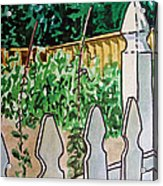 Garden Fence Sketchbook Project Down My Street Acrylic Print