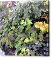 Garden Flower Border Acrylic Print