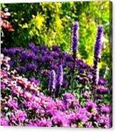 Garden Flowers 3 Acrylic Print