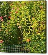 Garden Flowers Mixed Colors Acrylic Print