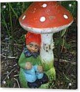 Garden Gnome Under Mushroom Acrylic Print