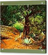 Garden Of The Lost Tribe Acrylic Print