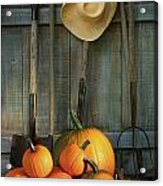 Garden Tools In Shed With Pumpkins Acrylic Print