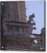 Gargoyles At Notre Dame Cathedral Acrylic Print