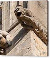 Gargoyles On Ely Cathedral Acrylic Print