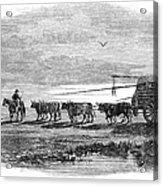 Gauchos, 1858 Acrylic Print