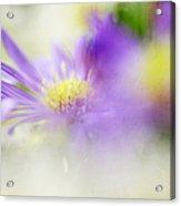 Gentle Bliss Acrylic Print