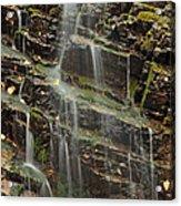 Gentle Waterfall In Glacier National Park Acrylic Print