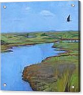Georgia Marsh Acrylic Print