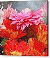 Gerberas In Pastels Acrylic Print