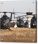 German Army Bo-105 Helicopters, Stendal Acrylic Print