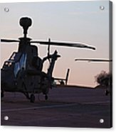 German Tiger Eurocopters At Stendal Acrylic Print