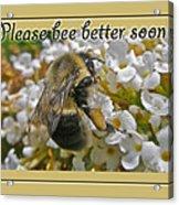 Get Well Card - Bumblebee Acrylic Print